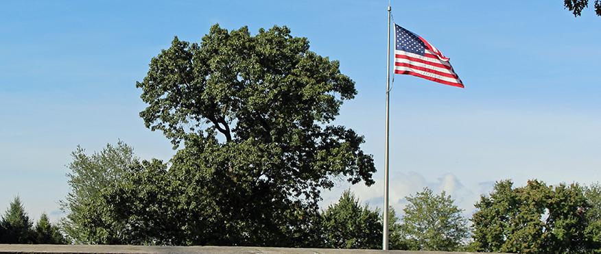 Paoli Battlefield US flag