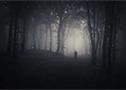 Paranormal Battlefield